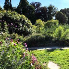 Gärten vielfältig gestalten